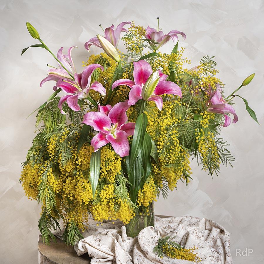 Ramo de mimosa y lilium rosa o blanco